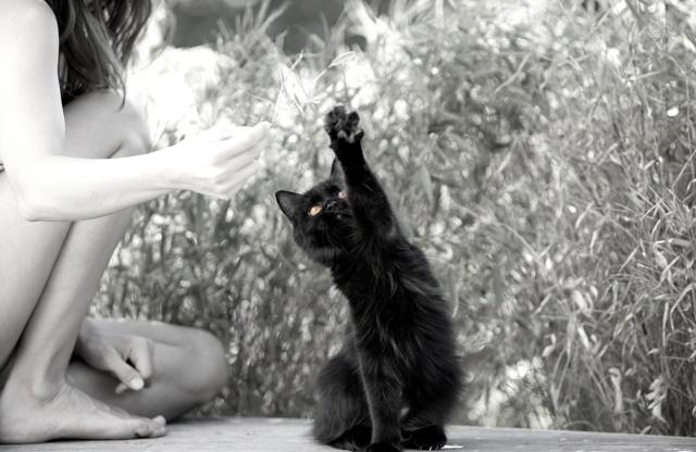 photo chat sensualité